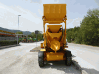 Concrete mixer Fiori DB 250 S